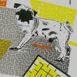 Kutya-labirintus-csont