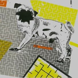 Dog-labyrinth-bone
